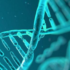 ARN ADN - Kits purificación